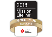 Mission: Lifeline Silver Receiving Quality Achievement Award 2017