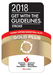 Spring Valley Hospital Stroke Gold Plus Target Stroke Honor Roll Elite 2018